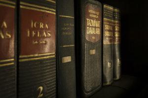 akta sprawy prowadzonej przed naczelnym sądem administracyjnym
